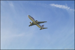Boeing 737-436 OK-WGY Czech Airlines (CSA) (Pavel Vanka) Tags: okwgy czech airlines boeing 737436 csa czechairlines 737 b737 ciaf czechinternationalairfest lktb brnoturany brno czechrepublic airplane plane aircraft airshow spotting spot spotter