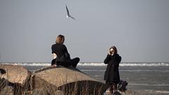PHOTOSESSION (pilot3ddd) Tags: stpetersburg alexandriapark gulfoffinland photosession seagull girls spring olympusomdem5markii olympusmzuiko40150mm