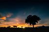 (ser-y-star) Tags: largaexposicion almeria andalucia sunset sunlight sunshine nubes color colorful colours árboles naturaleza