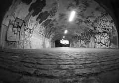 850 (a.pierre4840) Tags: panasonic lumix gm1 olympus 9mm f8 fisheye lenscap perspective vanishingpoint nightshot graffiti urban decay reading berkshire england tunnel streetphotography