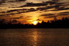 ...beyond the forest (Jim Atkins Sr) Tags: sunset twilight dusk cloudsstormssunsetssunrises clouds cloudscape spectacularsunsetsandsunrises northwestcreek northcarolina fairfieldharbour sony sonya58 sonyphotographing