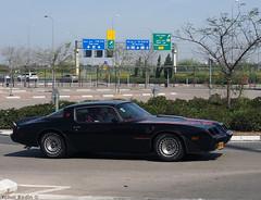 1981 Pontiac Firebird Trans Am Turbo (Yohai_Rodin) Tags: classic cars five club car tel aviv מועדון החמש מכונית קלאסית מכוניות קלאסיות הנתיב המהיר הולילנד 1000 holyland tour