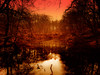 time for dreams (FotoTrenz NRW) Tags: red sunset lake forest fantasy landscape dreaming moody golden artwork glowing redsunset