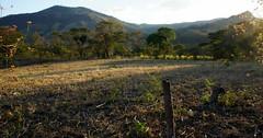 Eco-Paradise (malgor13) Tags: sunset nicaragua rural farm ecology crops sanlorenzo trip centralamerica