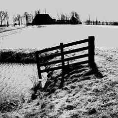 Water and Shadows (CloudBuster) Tags: meadow weilanden groen green countryside platteland friesland water open view uitzicht farms boederijen shadows schaduwen black white zwart wit