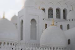 Sheikh Zayed Grand Mosque in Abu Dhabi (Frau Koriander) Tags: abudhabi orient scheichzayidmoschee مسجدالشيخزايد masdschidaschschaichzayid sheikh zayed moschee sheikhzayed vae uae emirates vereinigtearabischeemirate unitedarabemirates asien asia details mosque white building gotteshaus religion architecture architektur nikond300s lensbaby lensbabycomposerpro lensbabycomposerproedge80 lensbabyedge80 edge80 80mm tiltshift tilt weis gold gülden golden light licht gebäude islam glaube belief faith sakral sakralbauten sacredbuildings sacred