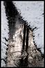 Шагая по воде (Tutchka) Tags: вода зима капель красота ломоносов ораниенбаум парк снег