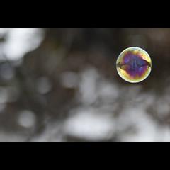 Bulle française (NAIGO) Tags: bolla bolladisapone neve francia biancon fra naigo canon 7d riflessi alberi