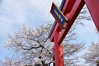 Sugawara Shrine2018