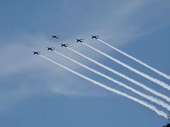 ブルーインパルス (arty822) Tags: 飛行機 ブルーインパルス
