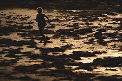 Lighthearted (matthew:D) Tags: girl ocean silh running silhouette water beach sandiego wet