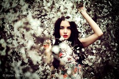 (ClvvssyPhotography) Tags: model cherryblossoms outdoor outside blooms portratiture gorgeous fineart flowers