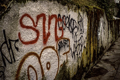 Make Your Mark (Paradise.Found) Tags: streetphotography city streettogs urban shadow light strange shadows street streetphotographer art flickr seattle miltongarrisonphotography paradisefound documentary interference environment life perception society reference framing culture critical descriptive interpretive usa sight observer depthoffield insight essential alienskinexposure autochrome graffiti lichen moss grass weeds sidewalk retaining wall red orange green yellow brown sonya6500 blood