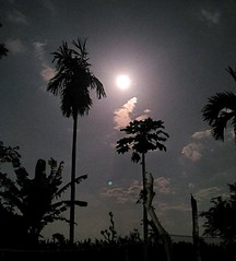 Playing with the moonlight  From : Mi2i #nightlandscape #nightphotography #nightmoment #moonlovers #moonlight #lensaupdate #originalpicture #newbie #fhotography #photographylovers #nightshoot #mypicture (ahmadmeisya) Tags: moonlovers newbie mypicture nightshoot photographylovers moonlight nightlandscape lensaupdate nightmoment originalpicture fhotography nightphotography