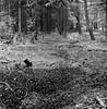 (David Gaborit) Tags: noiretblanc blackandwhite blancoynegro ilfordhp5 rolleiflex28e carlzeissplanar80mmf28 6x6 scotland ecosse
