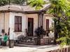 Cuban street scenes 2 (Phil Kinsman (Olwebhound)) Tags: cuba husky lightroom olympuspenf ottawa panasonicleicalens placestags topazstudio varadero cat dog hotday hotdog oldhouse palm street sun tropuics