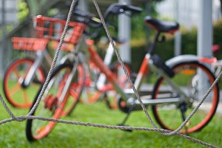 bike sharing - eco-friendly solution or bicycle littering?