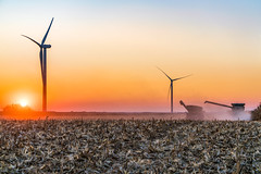 (Clint Everett) Tags: landscape sunset wind turbine farm rural country combine tractor farmer agriculture harvest field corn sky