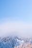 Paysage (olivier-richardet.com) Tags: météorologie neige paysage wwworch saintcergue vaud suisse ch