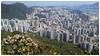 獅子山下的九龍 The view of Kowloon from Lion Rock (Alice 2018) Tags: spring architecture building huawei leica p9 mhal29 mobile huaweimate9 mate9 hongkong 2017 green asia city flower hike nature park hill