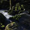 Water and Sunlight - 1 (fksr) Tags: creek water rocks moss plants sunlight shadows landscape marincounty california ferns