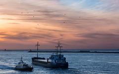 IJmondhaven sunset (tribsa2) Tags: sunrisesunset sunset seaside sky seascape sea ship vessel noordpier nederlandvandaag