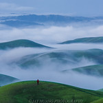 Spring Rolling Hills with Low Fog thumbnail