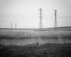 Meadowlands (devb.) Tags: 4x5 largeformat linhoftechnika4 90mm ilfordfp4 meadowlands nj