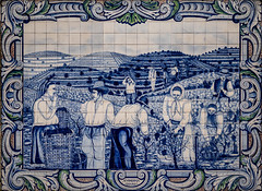 The history of the Douro valley (Leaning Ladder) Tags: régua portugal azulejos tile art mural dourovalley wine winery harvest blue leaningladder canon 7d mkii