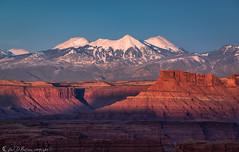 La Sal Sunset (Bill Bowman) Tags: lasalmountains mounttukuhnikivatz mountpeale mountmellenthin canyonlandsnationalpark islandinthesky whitecrackcamp canyonrimsrecreationarea publiclandforpublicuse sunset