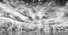 COSTA RICA 3 (Nigel Bewley) Tags: costarica centralamerica february february2018 canonef1635mmf28lusm canon5dmkii 830nm infrared digitalinfrared advancedcameraservices blackandwhite blackwhite creativephotography artphotography nigelbewley photologo tortuguero river rio rainforest sky clouds touristboat