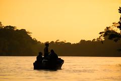Sunset on the jungle river (Wanda Amos@Old Bar) Tags: sabah wandaamos forest river sunset water atmosphere kinabatanganriver