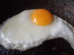 Fried egg (ianharrywebb) Tags: iansdigitalphotos egg