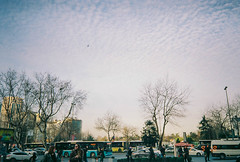 000039 (şbnm) Tags: canon canon700d flower sky blue green istanbul people color sunset light sea cloud night city building tree road macro