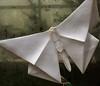"""Butterfly Unfolding"" metal origami (detail) (Distraction Limited) Tags: botanicalgardens gardens tucson arizona tucsonbotanicalgardens tucsonbotanical tbg20180315 origamiinthegarden2 origamiinthegarden kevinbox jenniferbox michaelglafosse bethjohnson robertjlang kevinboxstudio butterflies metalsculpture sculpture"