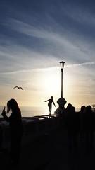 Fun on the sea wall at sunset (David R Carter) Tags: brighton uk england seawall sunset silhouette