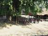 Myanmar - Bahnfahrt von Yangon nach Mawlamyine (ulfinger) Tags: myanmar burma birma eisenbahn train yangon rangun mawlamyine bahnhof