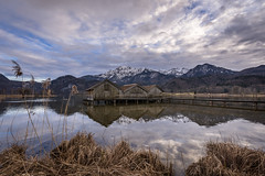 Fishing huts on Lake Kochelsee (hjuengst) Tags: kochelsee bavaria bayern lake reflection reflektionen mountains alps berge alpen weed gras clouds wolken schlehdorf