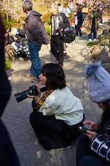 Young photographer of the plum blossom (Christophe-la) Tags: jonangu plumtree flower 梅の花 梅 花 people lady woman