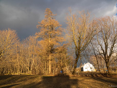 The sky was threatening. (Lise1011) Tags: spring landscape sunset nature outdoor rural orange clouds trees barn beautiful luminosisty sky canada america quebec black white