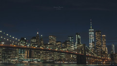 "The ""Skyline""