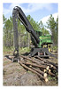 GFC (GFCtrees) Tags: forest forestry gfc stateforest deanmemorialforest dixon longleaf okefenokee southga treeremoval