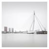 Erasmusbrug (Vesa Pihanurmi) Tags: erasmusbrug bridge architecture rotterdam netherlands holland longexposure cityscape skyline