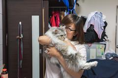 CAT_3024 (kblover24) Tags: nikon d810 sigma 35 35mm f14 art
