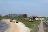 IMG_0059 (muirsr70) Tags: marken noordholland netherlands nld geo:lat=5246012900 geo:lon=513811300 geotagged moeniswerf