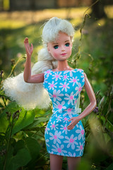 LRM_EXPORT_20180317_181609 (bettyteendoll) Tags: bettyteendoll bettyteenbytong bettyteen doll tong barbieclon