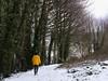 20180318-145116 (aderixon) Tags: naturelandscapehill natureplanttree natureweathersnow peopleanonymous transportpath pontypridd midglamorgan walesuk nature snow weather
