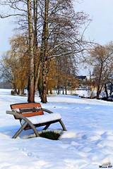 Photos Marco BP (33)_GF (marcbihanpoudec) Tags: bretagne neige plabennec plan deau lac banc arbres