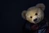 Barney (hehaden) Tags: bear teddybear vintage antique farnell jkfarnell english scarf blackbackground