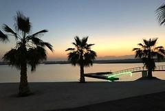The Ritz Carlton, Ras Al Khaimah, Al Hamra Beach 13 (Travel Dave UK) Tags: theritzcarlton rasalkhaimah alhamrabeach